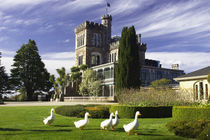 Larnach Castle, Otago Peninsula, Dunedin, South Island, New Zealand von Danita Delimont
