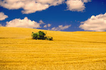 NA,USA,Washington State,Palouse Region,Combines Harvesting Crop von Danita Delimont