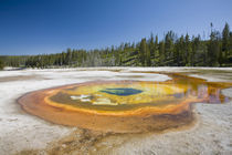 WY, Yellowstone National Park, Upper Geyser Basin, Chromatic Pool by Danita Delimont