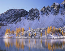 WA, Okanogan NF, Upper Eagle Lake and Sawtooth Ridge with golden Larch trees von Danita Delimont