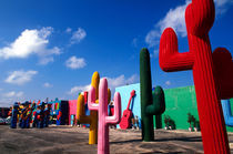 Colorful cactus artwork outside of Cancun, Mexico by Danita Delimont