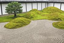 Japan, Kyoto, Tofukuji Temple, Landscape Garden by Danita Delimont
