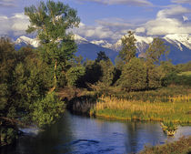 Mission Creek runs through the National Bison Range with Mission Mountains von Danita Delimont