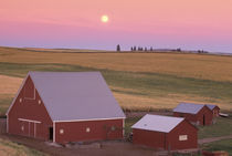 NA, USA, Washington, NW of Colfax Moonrise at sunset with red barns by Danita Delimont