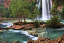 USA, Arizona, Havasu Canyon von Danita Delimont