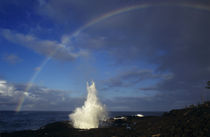 Spouting Horn with rainbow, Po'ipu, Kauai, Hawaii, USA, August 1996 by Danita Delimont