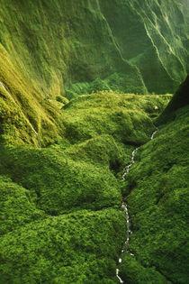 Wai Ale Ale (aerial), Kauai, Hawaii by Danita Delimont