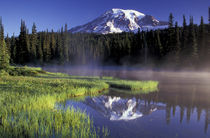 N.A., USA, Washington, Mt. Rainier Nat'l Park Reflection Lake, early morning by Danita Delimont