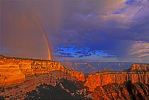 United States, Arizona, Grand Canyon National Park by Danita Delimont