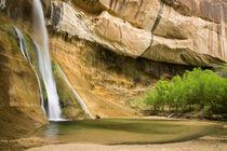 Lower Calf Creek Falls in the Grand Staircase Escalante National Monument, Utah by Danita Delimont