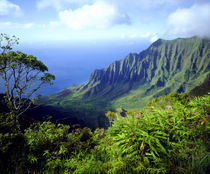 USA, Kauai, Hawaii. View above the Na Pali Coast. Credit as von Danita Delimont