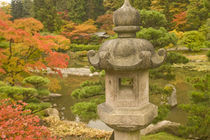 USA, Washington State, Seattle. Japanese Garden, Washington Park Arboretum. by Danita Delimont