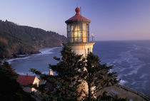 NA, USA, Oregon Heceta Head Lighthouse, evening light by Danita Delimont