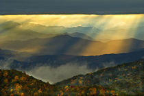 USA, North Carolina, Great Smoky Mountains by Danita Delimont