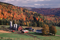 Vermont farm in the fall. (PR) von Danita Delimont