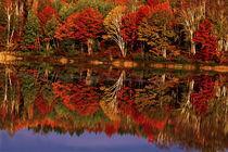 United States, Michigan, Upper Penninsula by Danita Delimont