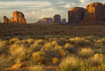 USA, Utah, Monument Valley National Park von Danita Delimont