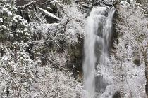 Late spring storm von Danita Delimont