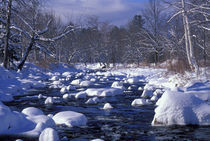 The National Wild and Scenic Wildcat River, White Mountains von Danita Delimont