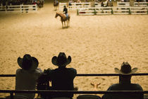 USA-TEXAS-Fort Worth: Cowboys at Indoor Rodeo (NR) Will Rogers Memorial Center by Danita Delimont