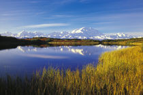 NA, USA, Alaska, Denali NP Mt. McKinley in Reflection Pond, autumn colors by Danita Delimont
