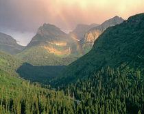 USA, Montana, Glacier NP by Danita Delimont