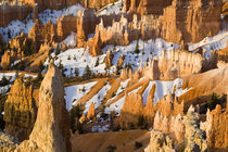 Hoodoos at Sunrise Point in Bryce Canyon National Park in Utah von Danita Delimont