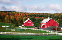 A farm in Vermont near Peacham. RELEASE AVAILABLE. by Danita Delimont