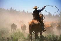 A cowboy out working the herd on a cattle drive through central Oregon. von Danita Delimont