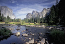 NA, USA, California, Yosemite NP Valley view by Danita Delimont