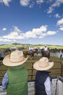 Young boys take Hughes Ranch branding near Stanford Montana model released von Danita Delimont