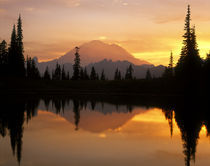 USA, Washington, Mt Rainier NP, Upper Tipsoo Lake reflection at sunset von Danita Delimont