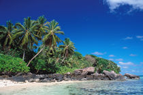 Seychelles, Mahe Island, Anse Royale Beach. by Danita Delimont