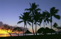 Sunrise Chinamans Hat Kaneohe Bay Kaneohe Oahu Hawaii by Danita Delimont