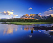 Sofa Mountain Reflects in Beaver Pond in Waterton Lakes National Park by Danita Delimont
