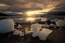 North America, USA, Alaska, Ice Bay, Icescape, landscape by Danita Delimont