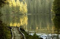 USA, Alaska, near Ketchikan, Naha Lagoon by Danita Delimont