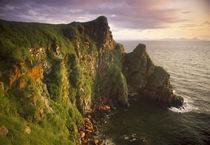USA, Alaska, Round Island Sactuary von Danita Delimont