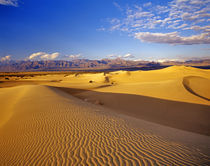 Mesquite Flat Sand dunes in Death Valley National Park in California von Danita Delimont