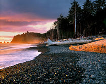 USA, Washington State,Waves lap the rocky beach at sunset at Rialto Beach von Danita Delimont
