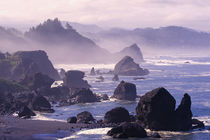 Morning mist along Oregon coast near Nesika, Beach, Oregon. von Danita Delimont