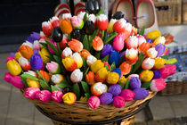 Tulips - wooden painted tulip flowers in basket by Ian Murray Geography Photos