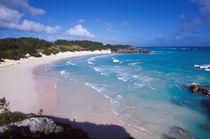 Caribbean, Bermuda, Southampton Parish, Horseshoe Bay. Pink sand beach by Danita Delimont