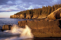 North America, US, ME, The rocky Maine coast. by Danita Delimont