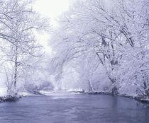 N.A., USA, Kentucky by Danita Delimont