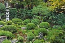Sanzen-in Temple, Ohara, Kyoto, Japan von Danita Delimont