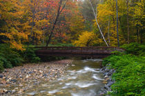 USA, Vermont, Graton, Saxton's River Bridge. by Danita Delimont