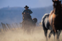 North America, USA, Oregon. Cowboy riding horse by Danita Delimont