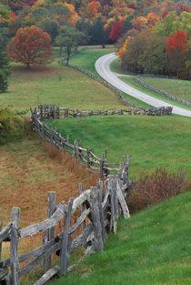 USA, North Carolina, Blue Ridge Parkway von Danita Delimont