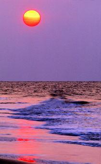 USA, South Carolina, Hilton Head Island by Danita Delimont